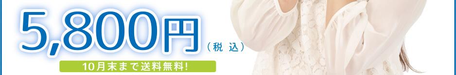 5,800円(税込)2016年3月末まで送料サービス(沖縄、離島を除く)